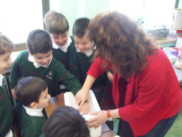 Los niños descubren la Ciencia