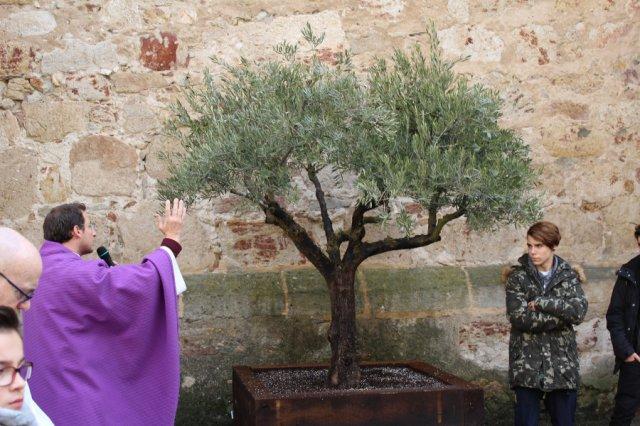 Los Escolapios celebran los 400 años de la fundación de su institución