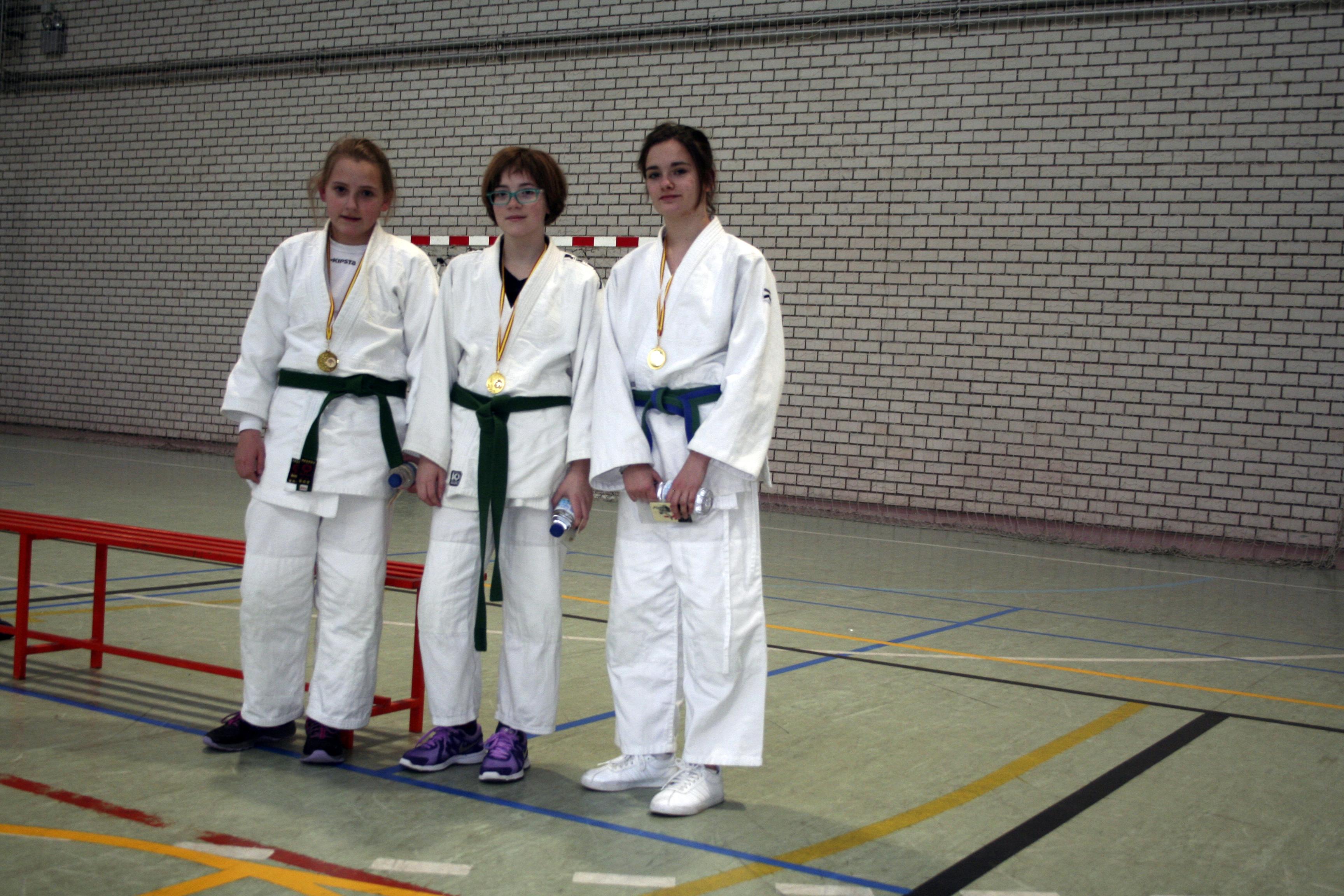 Trofeo Judo de Ayto. de Aldeamayor de San Martín.