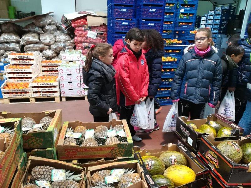Visita al Mercado de mayoristas