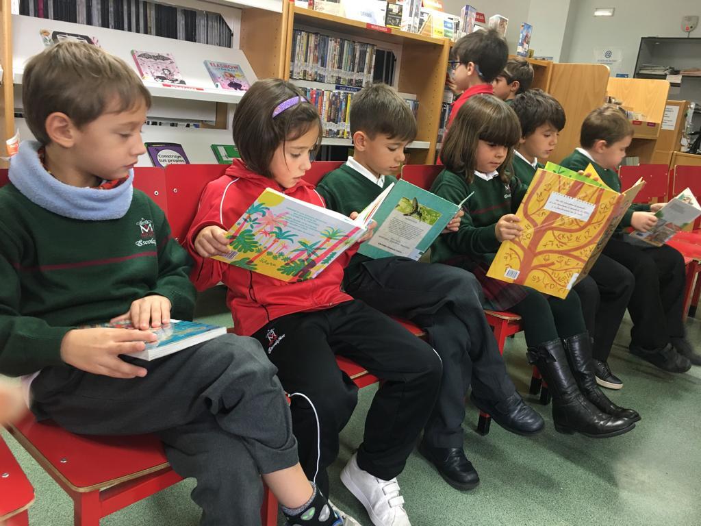 Visita a la biblioteca Municipal Miraltormes
