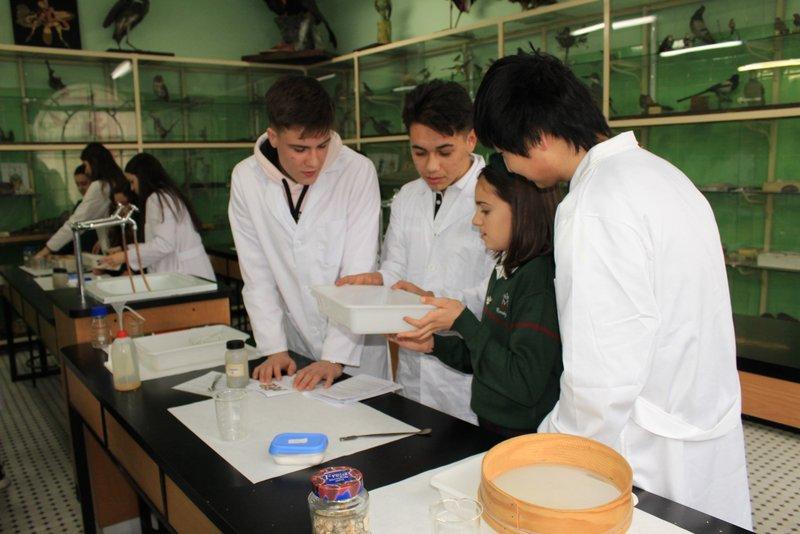 Aprendizaje-servicio en física