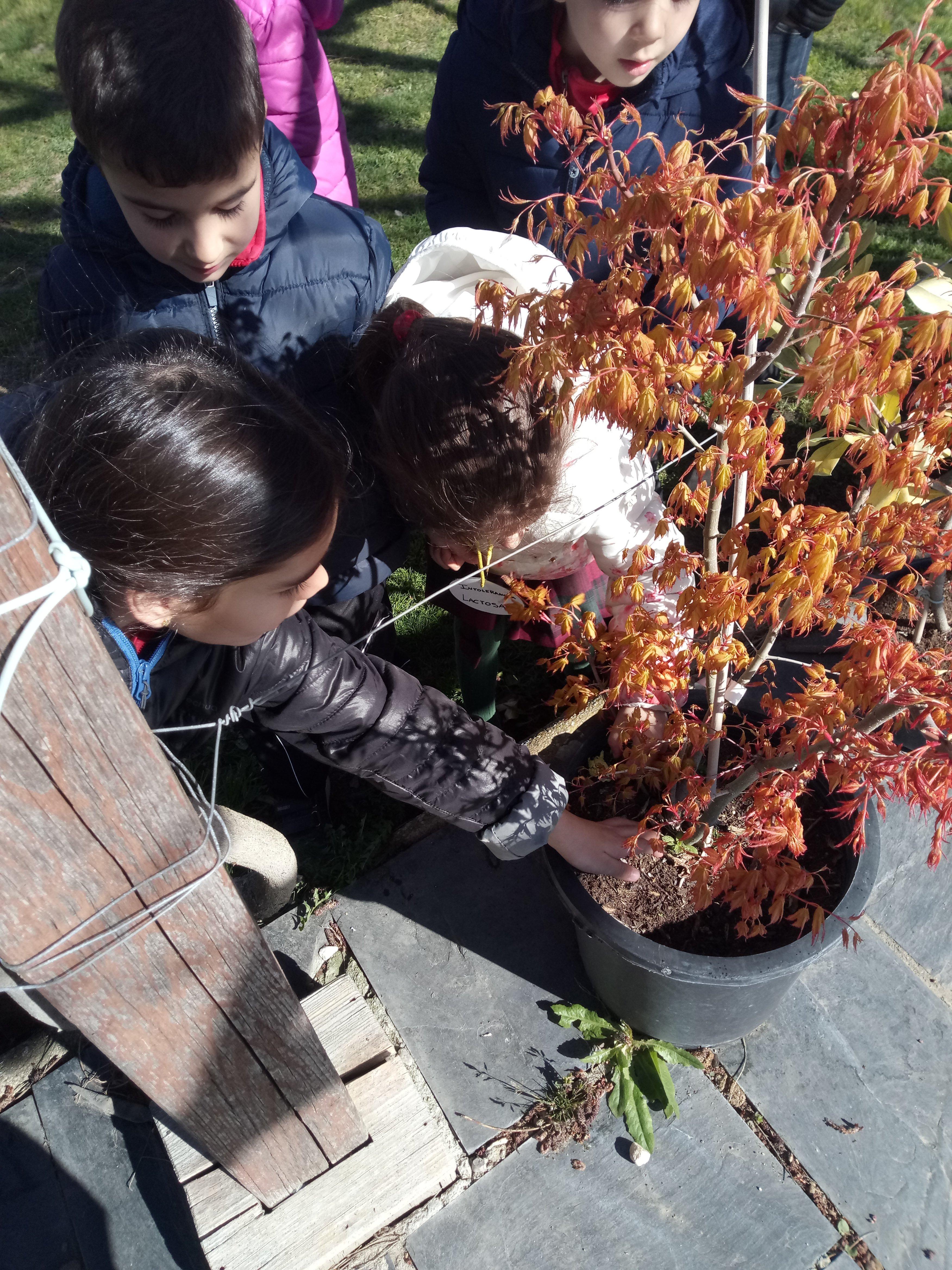 Infantil en la Granja Lorenzo Milani